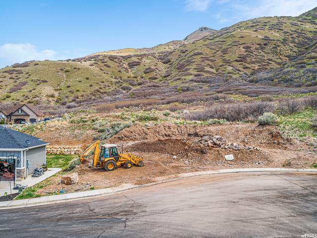 365 S 1150 E, Santaquin, UT 84655 (#1685121) :: The Perry Group