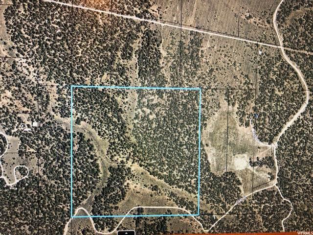 Address Not Published, Fruitland, UT 84027 (MLS #1685238) :: Lawson Real Estate Team - Engel & Völkers