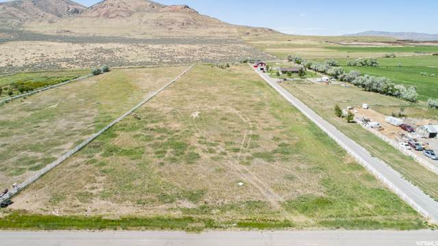12460 W 8040 N, Penrose, UT 84337 (#1685334) :: The Fields Team
