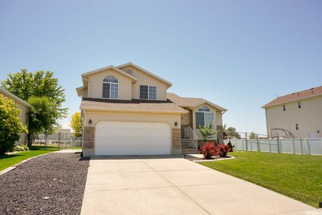 4177 W 5950 S, Roy, UT 84067 (#1685451) :: Doxey Real Estate Group