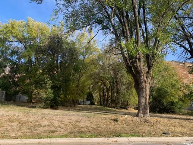 12373 S Hastingmeadow Ln, Draper, UT 84020 (#1685536) :: Bustos Real Estate | Keller Williams Utah Realtors