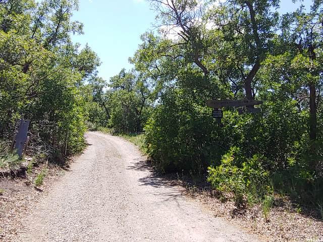 431 Storm Mountain (Cobble Ridge) Rd, Indianola, UT 84629 (#1685938) :: Big Key Real Estate