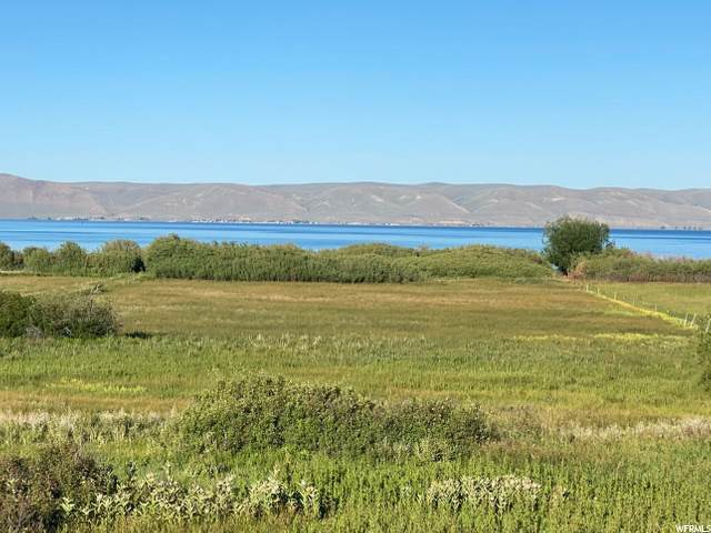 Address Not Published, Fish Haven, ID 83287 (#1685956) :: Big Key Real Estate
