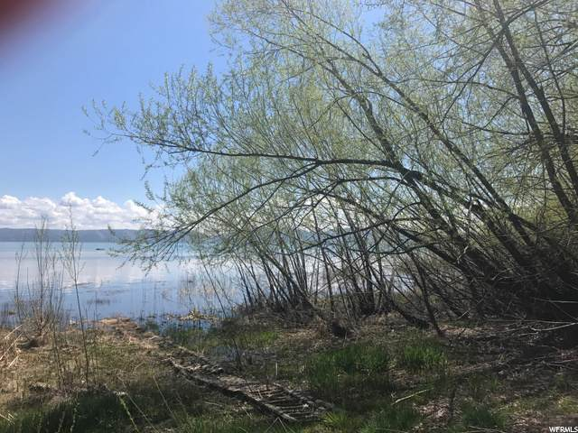 Address Not Published, Fish Haven, ID 83287 (#1685971) :: Big Key Real Estate