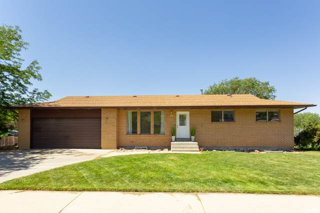 953 N Murdock Dr, Pleasant Grove, UT 84062 (#1686800) :: Zippro Team