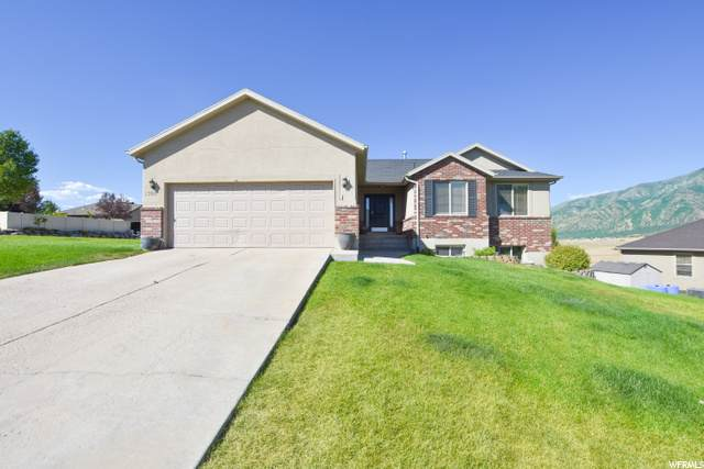 1360 Sageberry Dr, Santaquin, UT 84655 (#1687016) :: The Fields Team