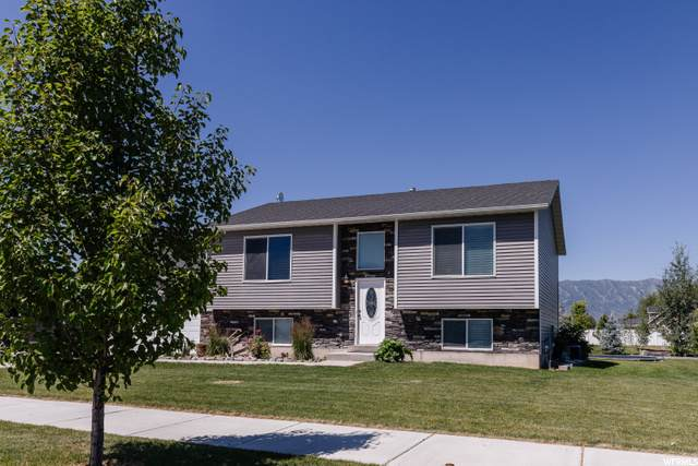 3329 S 1525 W, Nibley, UT 84321 (#1687420) :: Red Sign Team