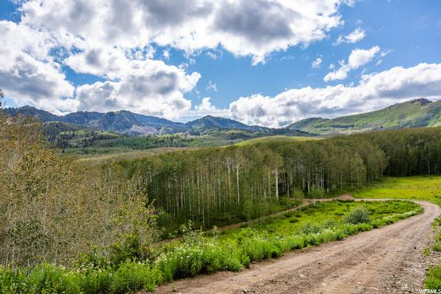 1991 W Bright Star Rd, Midway, UT 84049 (MLS #1687778) :: High Country Properties