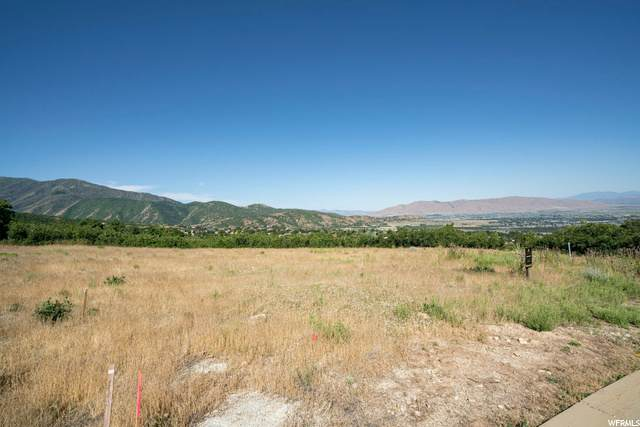 706 S Nebo Cir, Woodland Hills, UT 84653 (MLS #1688130) :: Lawson Real Estate Team - Engel & Völkers