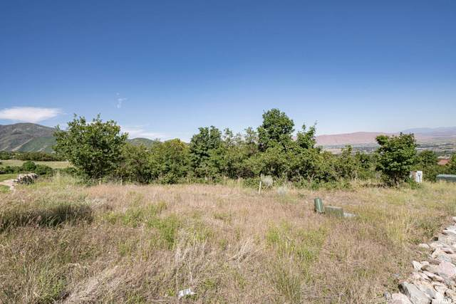668 S Summit Creek Dr, Woodland Hills, UT 84653 (MLS #1688170) :: Lawson Real Estate Team - Engel & Völkers