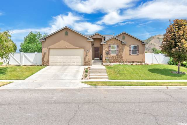 1565 S 740 W, Payson, UT 84651 (#1688910) :: Colemere Realty Associates