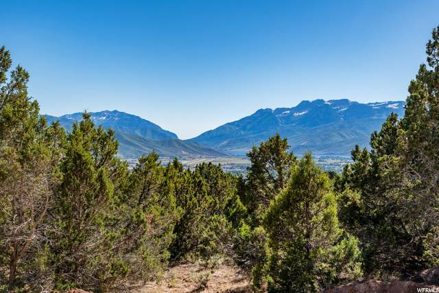 2877 E La Sal Peak Dr (Lot 606), Heber City, UT 84032 (#1689156) :: REALTY ONE GROUP ARETE