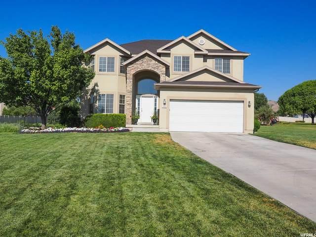 1757 N Parsley Ct, Saratoga Springs, UT 84045 (#1689741) :: McKay Realty