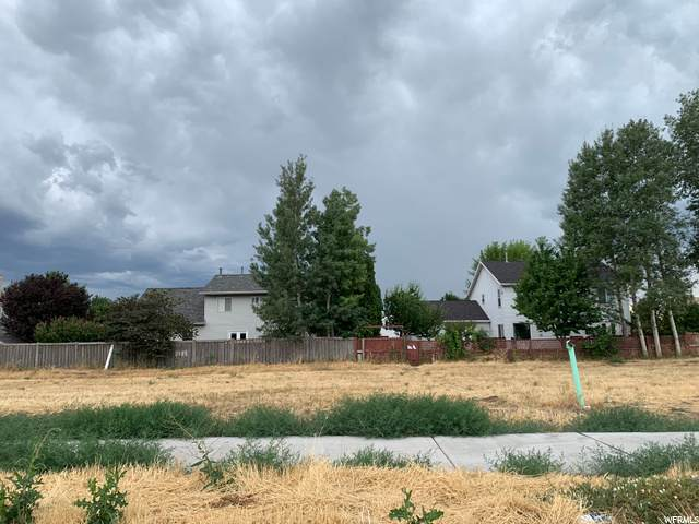 203 W 580 S, Orem, UT 84058 (#1690042) :: The Perry Group