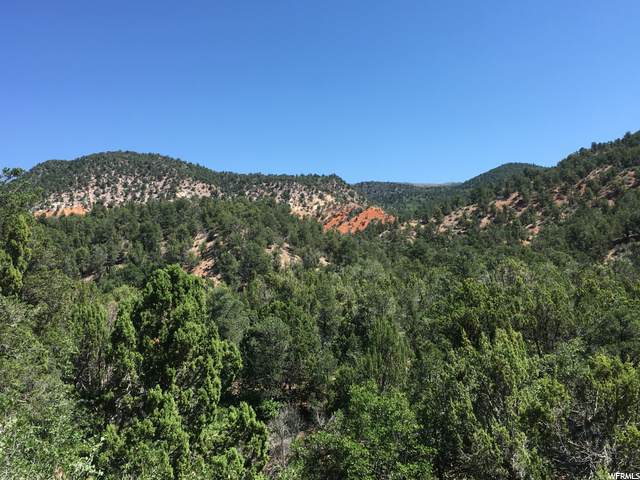 Address Not Published, Cedar City, UT 84720 (MLS #1690160) :: Summit Sotheby's International Realty