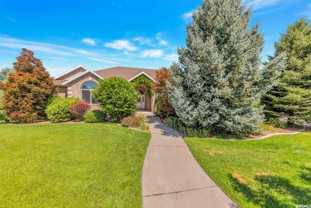 1731 N 1400 E, Lehi, UT 84043 (#1690273) :: Doxey Real Estate Group