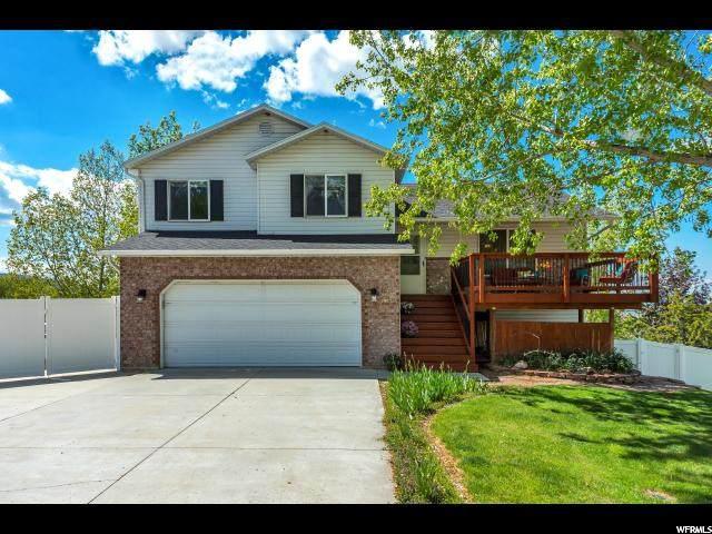 341 E Ocampo Ln, Elk Ridge, UT 84651 (#1690476) :: Big Key Real Estate