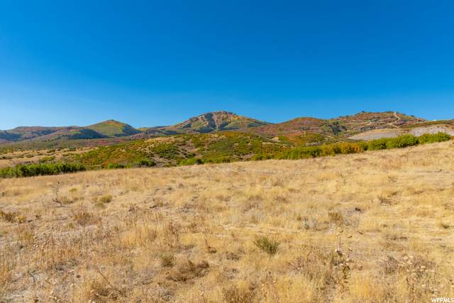 11352 N Orion Dr, Heber City, UT 84032 (MLS #1691472) :: High Country Properties