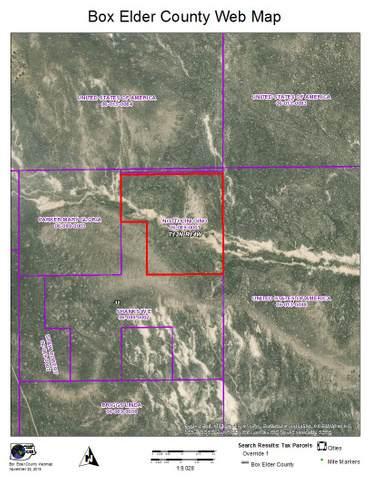 Dove Creek Hills, Park Valley, UT 84329 (#1691689) :: Colemere Realty Associates
