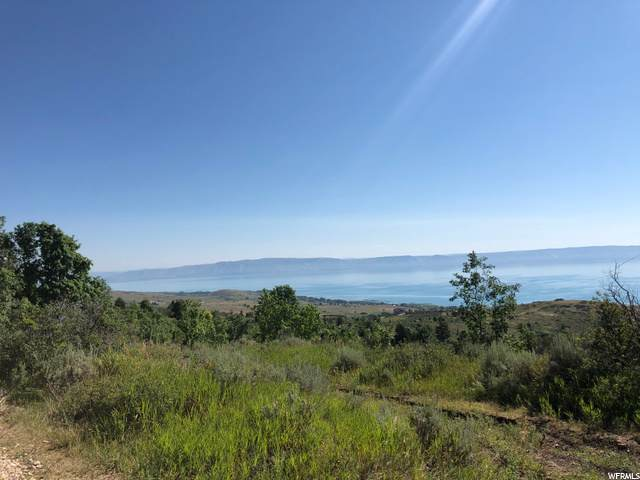 3 Spring Hollow Rnch, Fish Haven, ID 83287 (#1691799) :: Colemere Realty Associates