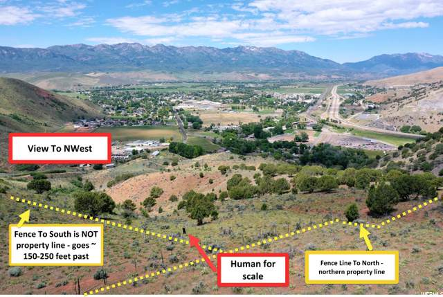 Address Not Published, Morgan, UT 84050 (#1691878) :: Red Sign Team