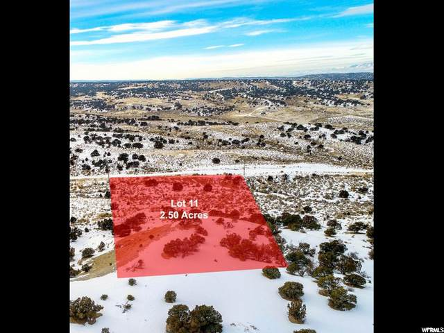 12693 S Coyote Canyon Cv, Duchesne, UT 84021 (#1691929) :: Colemere Realty Associates