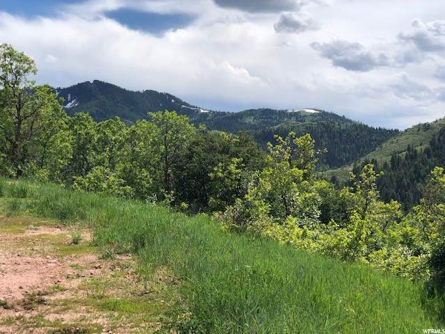 7144 Canyon Dr, Park City, UT 84098 (MLS #1692408) :: High Country Properties
