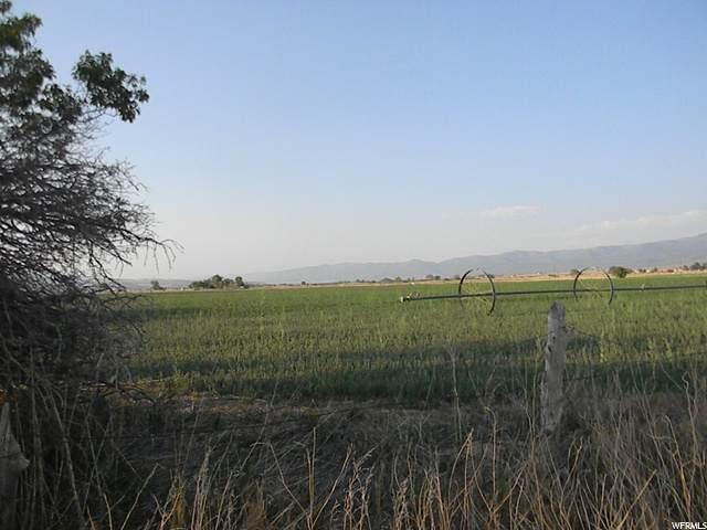 8900 E 15100 N, Spring City, UT 84662 (#1692674) :: The Fields Team