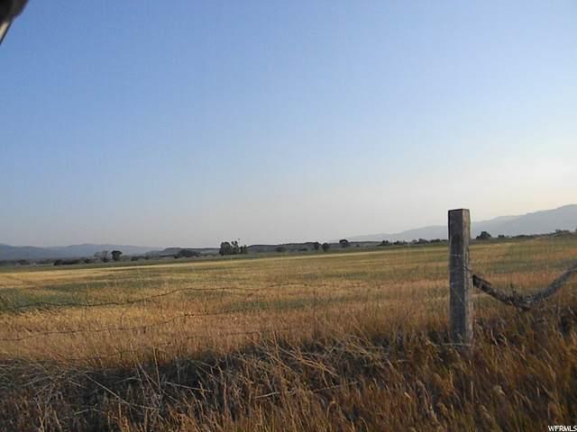 8900 E 15300 N, Spring City, UT 84662 (#1692685) :: The Fields Team