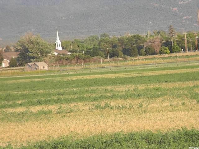 8900 E 155000 N, Spring City, UT 84662 (#1692716) :: The Fields Team