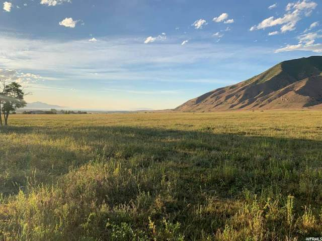2286 E Pinto Pkwy N, Tooele, UT 84074 (#1692838) :: Powder Mountain Realty