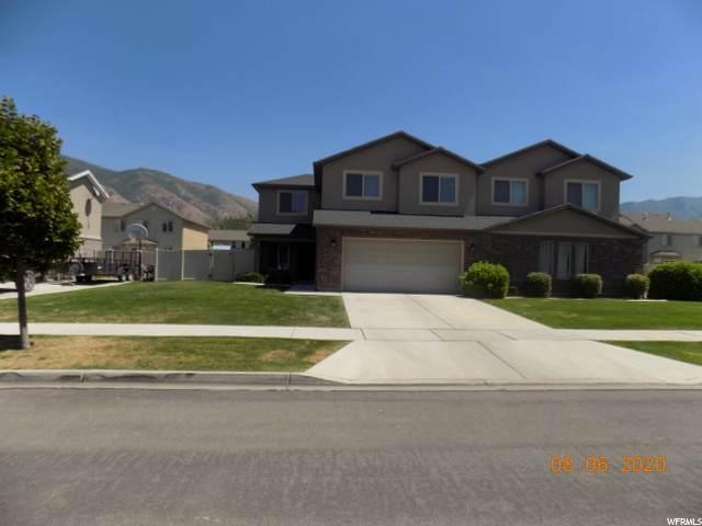 133 S 1125 W, Springville, UT 84663 (MLS #1693033) :: Lookout Real Estate Group
