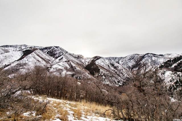 1380 S Eagle Nest Dr, Woodland Hills, UT 84653 (#1693088) :: Bustos Real Estate | Keller Williams Utah Realtors