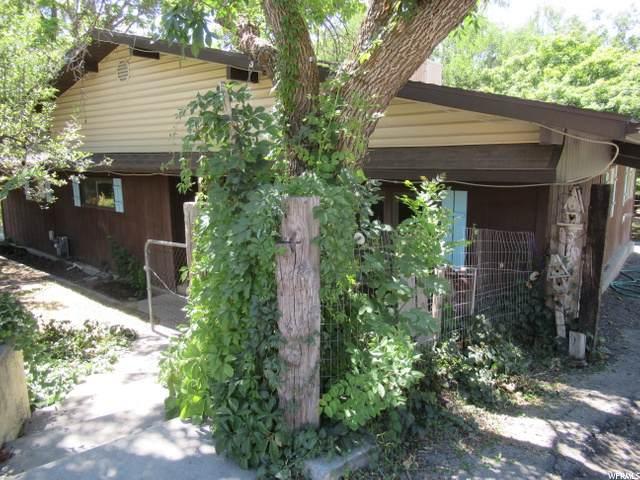 4251 N Canyon Rd, Pleasant Grove, UT 84062 (#1693490) :: Bustos Real Estate | Keller Williams Utah Realtors