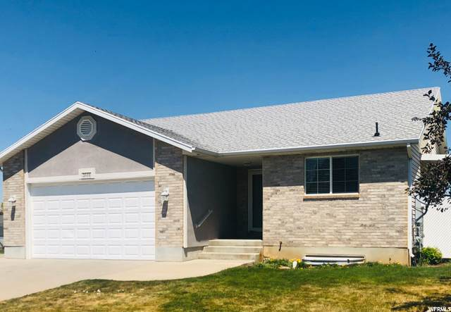 2448 W 2375 N, Clinton, UT 84015 (#1693610) :: Doxey Real Estate Group