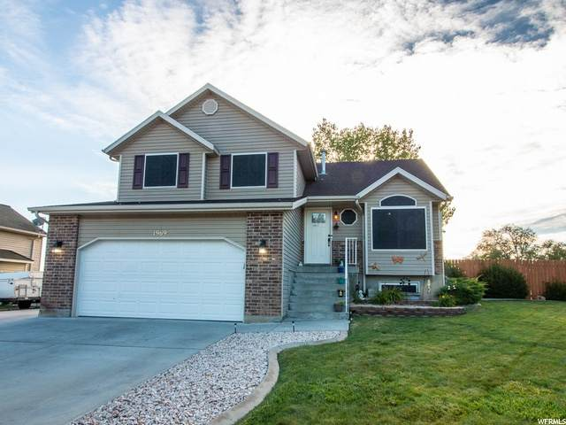 1969 N 150 E, North Ogden, UT 84414 (#1693813) :: RE/MAX Equity