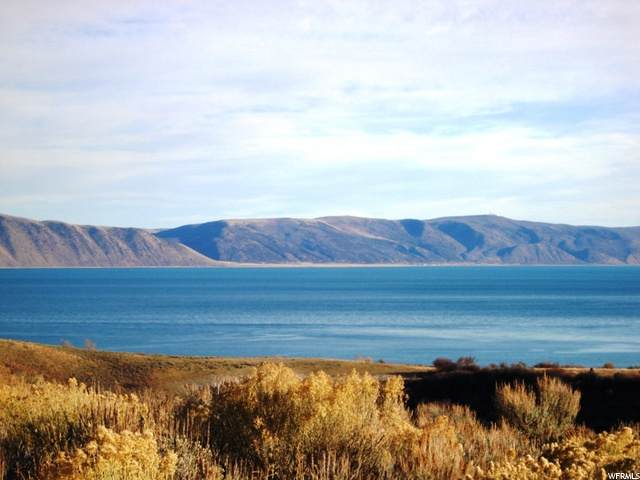 173 Canyon Pl, Fish Haven, ID 83287 (MLS #1694089) :: Lookout Real Estate Group