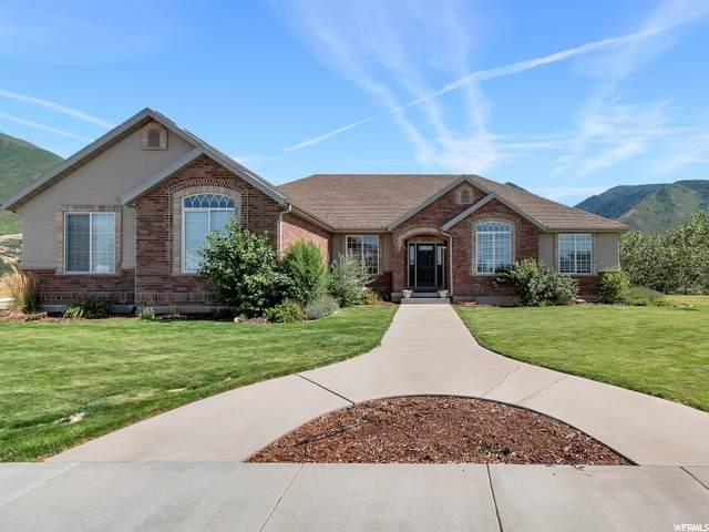 3252 E Canyon Dr, Spanish Fork, UT 84660 (MLS #1694093) :: Lawson Real Estate Team - Engel & Völkers