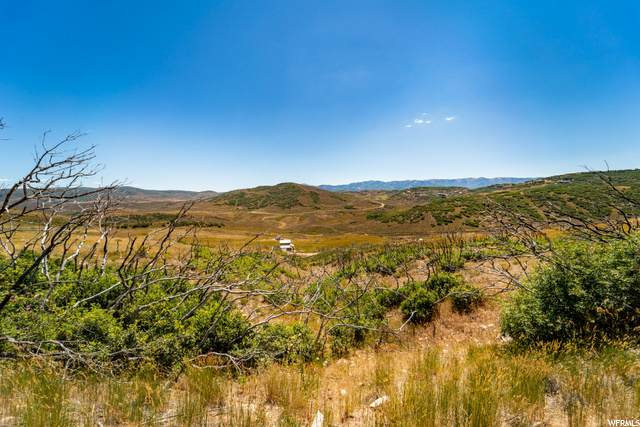 265 A Sage, Wanship, UT 84017 (#1694292) :: Doxey Real Estate Group