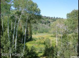 9644 Deer Creek Dr, Heber City, UT 84032 (MLS #1694793) :: High Country Properties