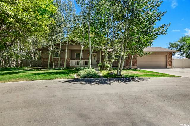 893 S Alpine Hwy, Alpine, UT 84004 (#1694822) :: Gurr Real Estate