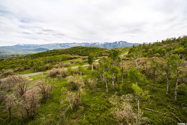 1520 Preserve Dr, Park City, UT 84098 (#1695175) :: Colemere Realty Associates