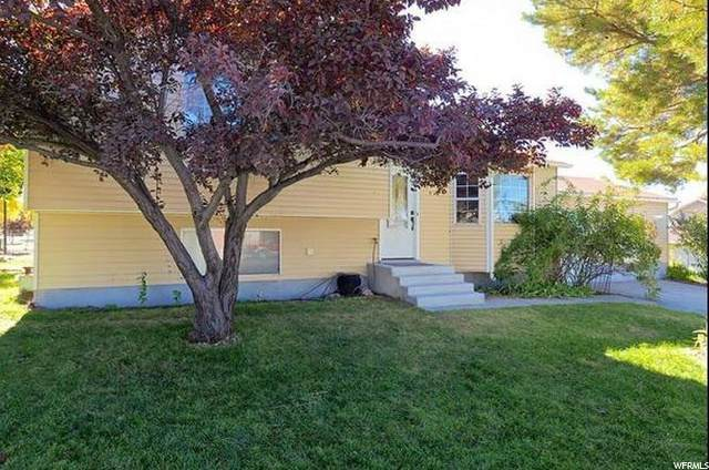 719 W Three Oclock Dr S, Tooele, UT 84074 (#1695725) :: Colemere Realty Associates