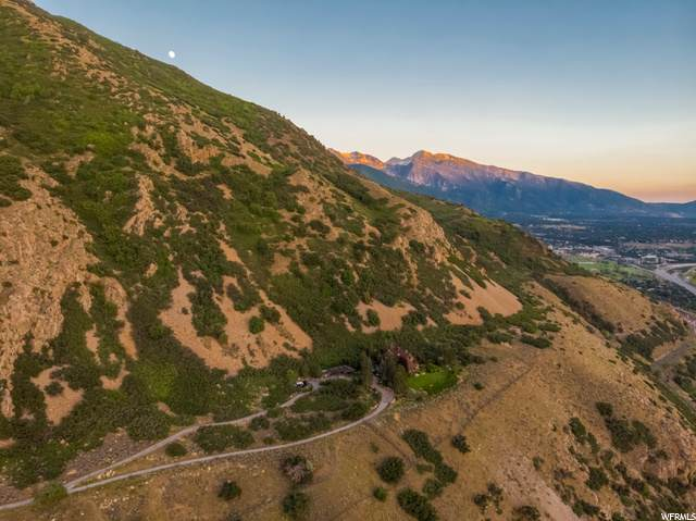 5060 S Mile High Dr, Salt Lake City, UT 84124 (MLS #1696285) :: Lookout Real Estate Group