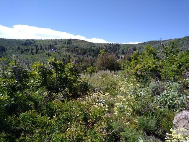4985 S Woodland Way, Woodland, UT 84036 (MLS #1696350) :: High Country Properties