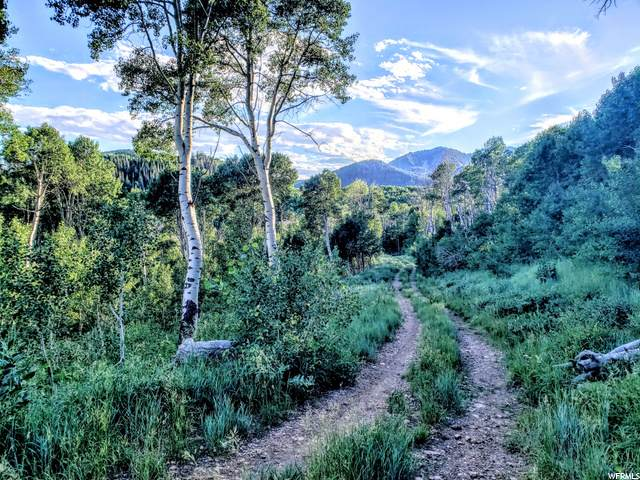 5444 N Hidden Way, Midway, UT 84049 (MLS #1697086) :: High Country Properties