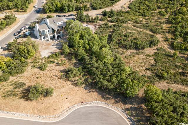 950 S Aspen Cir, Woodland Hills, UT 84653 (MLS #1697161) :: Lawson Real Estate Team - Engel & Völkers