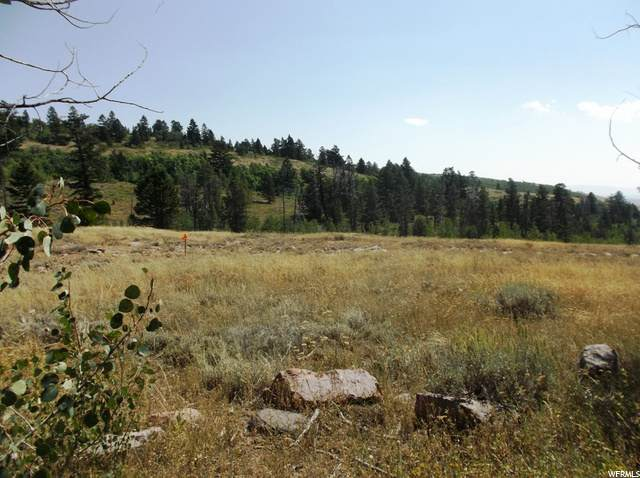 994 National Forest Service Rd #17, Montpelier, ID 83254 (#1697813) :: Big Key Real Estate
