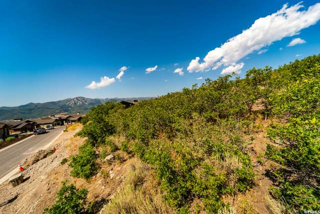 1203 E Black Hawk Way, Heber City, UT 84032 (MLS #1697984) :: High Country Properties