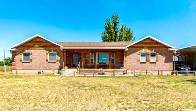 3356 W 1200 S, Ogden, UT 84404 (#1698021) :: Big Key Real Estate